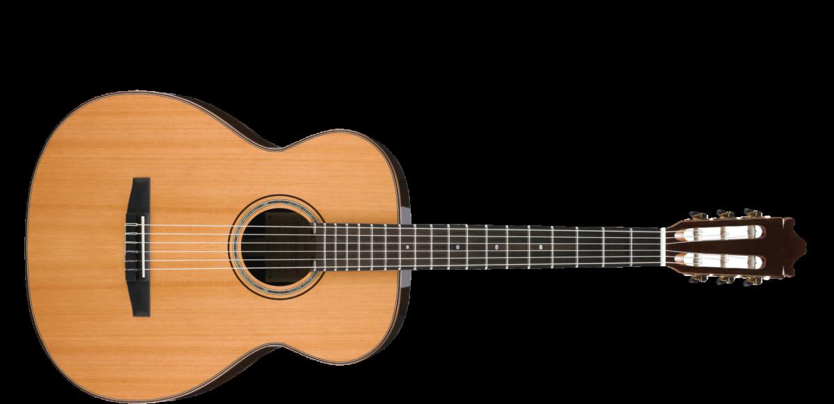 Nylon String Guitar Winnipeg