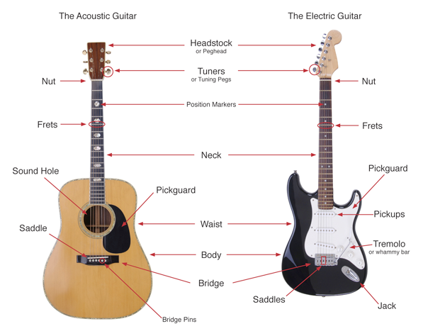 Parts of the guitar outlined in visual form